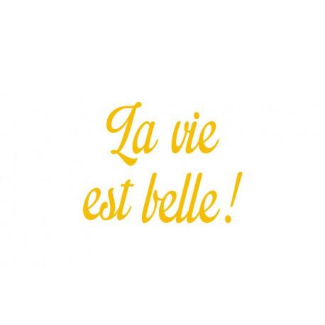 """Texte en flex thermocollant """"La vie est belle"""""""