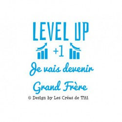 "Texte en flex thermocollant""Level Up je vais devenir grand frère"""