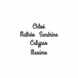 prenom_thermocollant_pas_cher